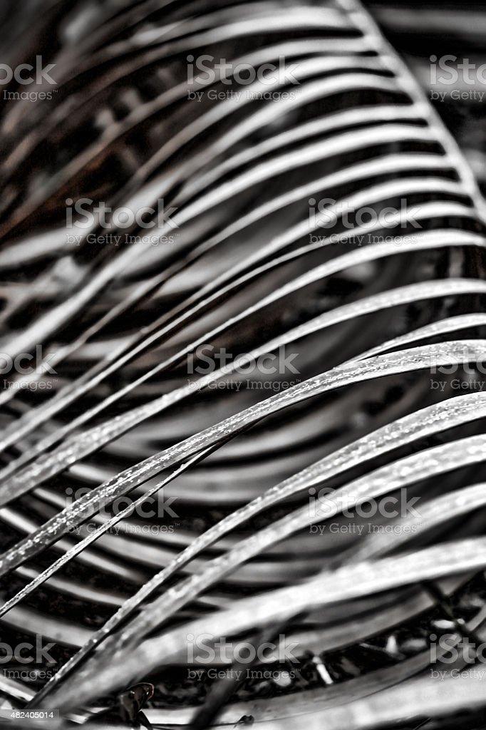 Skelett des socity Lizenzfreies stock-foto