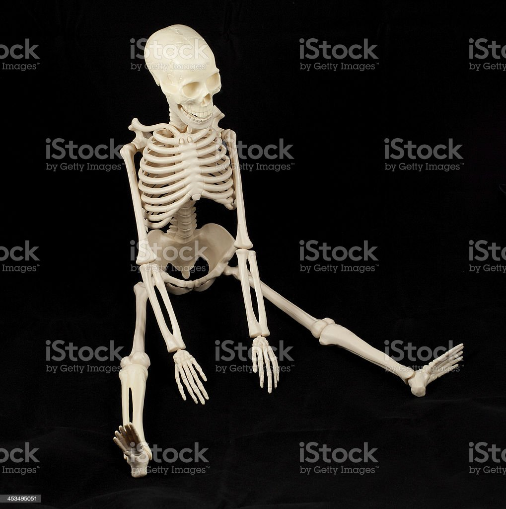 Skeleton sitting royalty-free stock photo