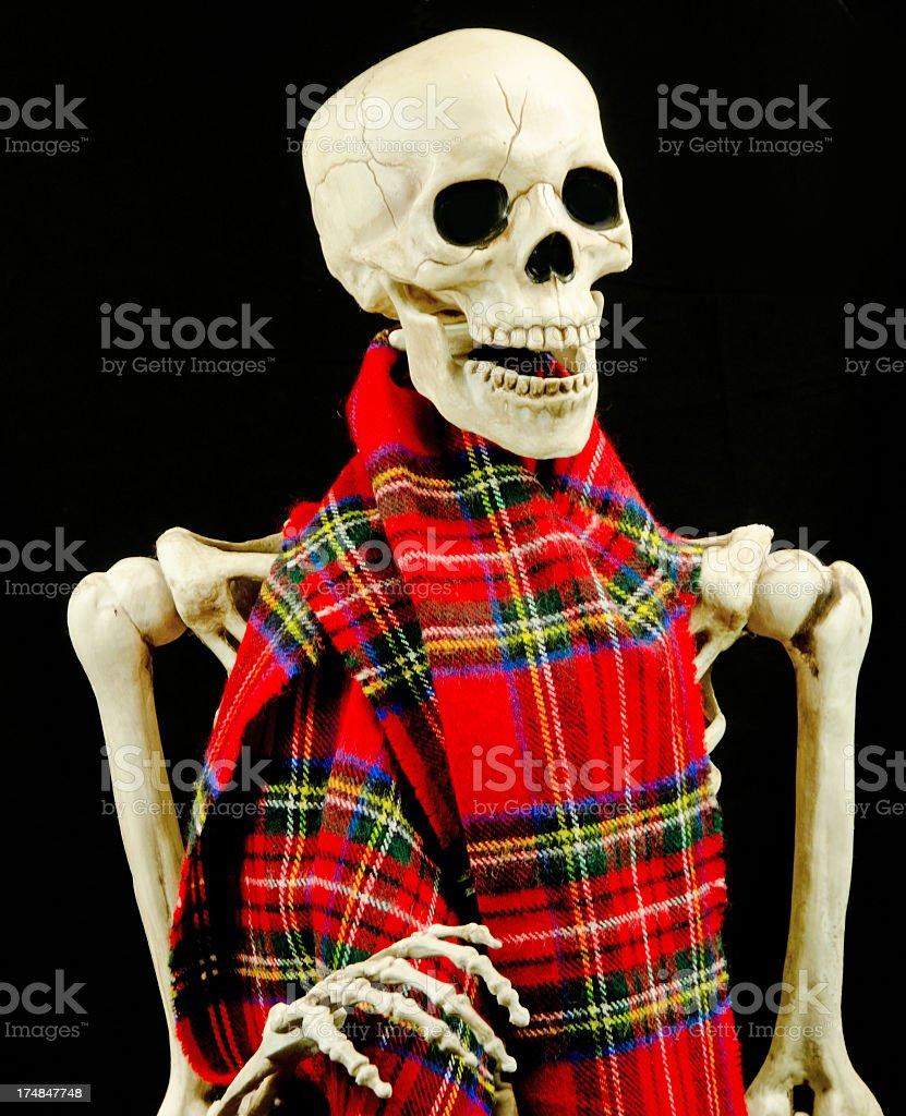 Skeleton Wearing Scarf royalty-free stock photo