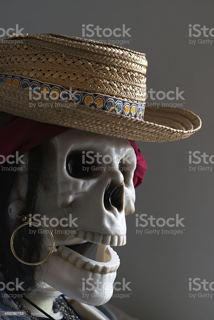 skeleton with a hat royalty-free stock photo