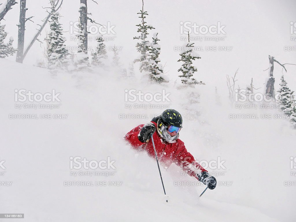 Ski Alberta Powder stock photo