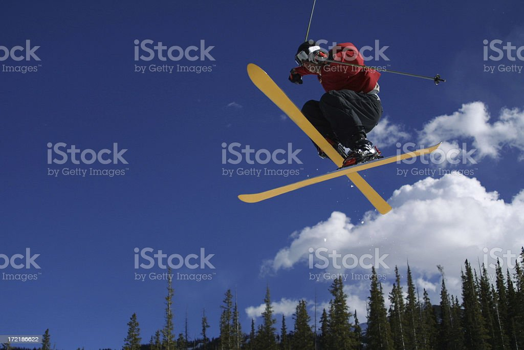 Ski Cross royalty-free stock photo