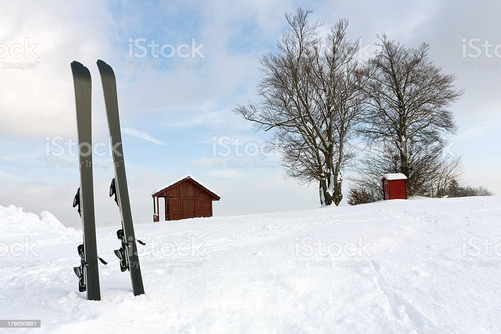 Ski in snow stock photo