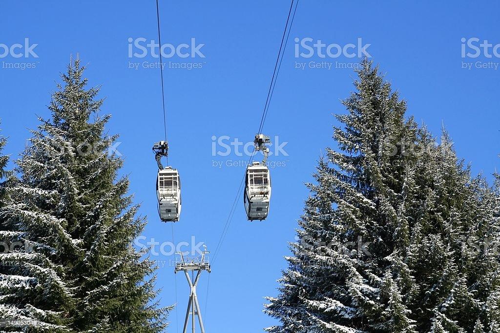 Ski lift and pine trees royalty-free stock photo