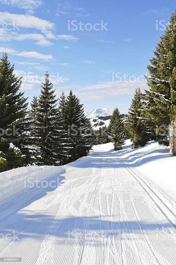ski run in snow forest on mountain in Avoriaz stock photo