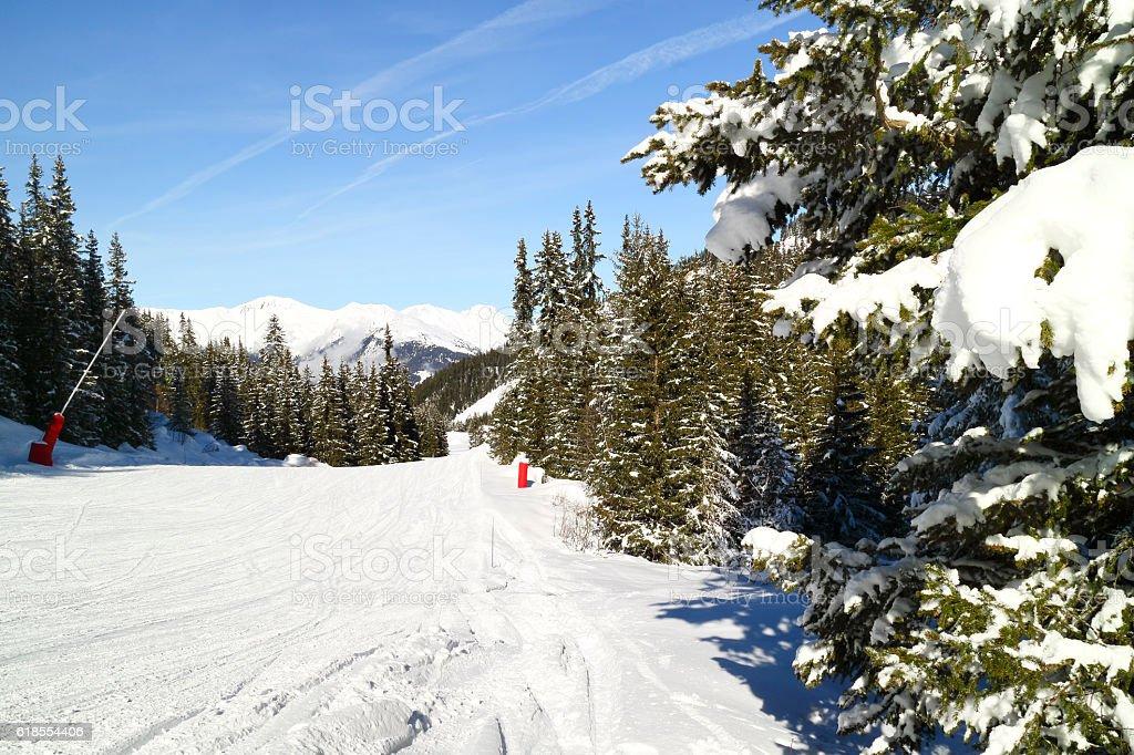 ski run through the woods in the mountains stock photo