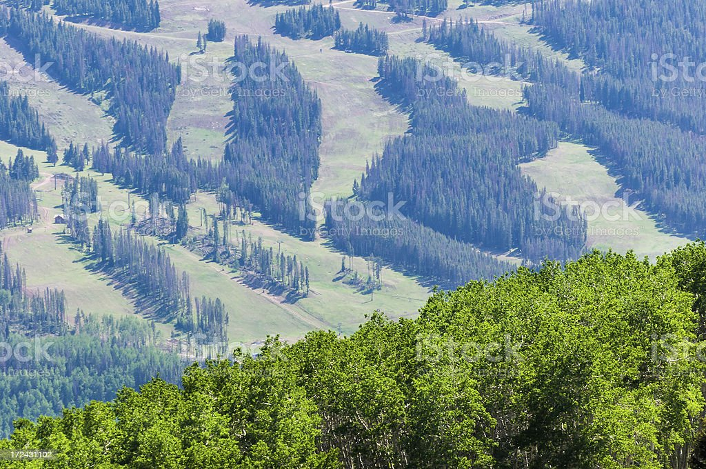 Ski Runs in Summer Vail Colorado royalty-free stock photo