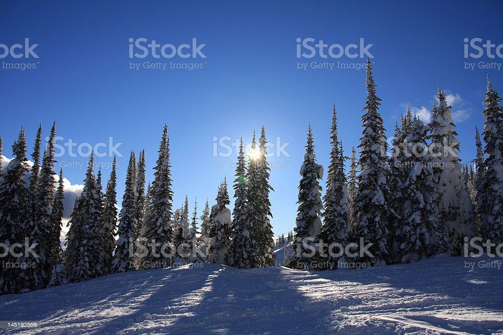 Ski slopes of Silver Star royalty-free stock photo