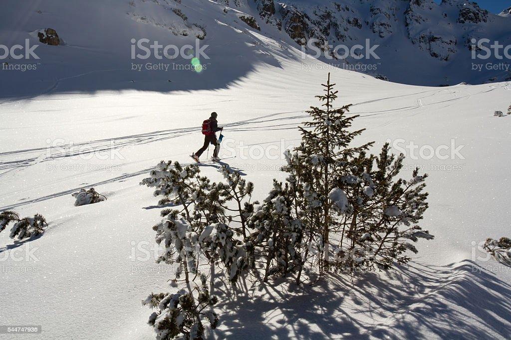 Ski touring in the winter mountain stock photo