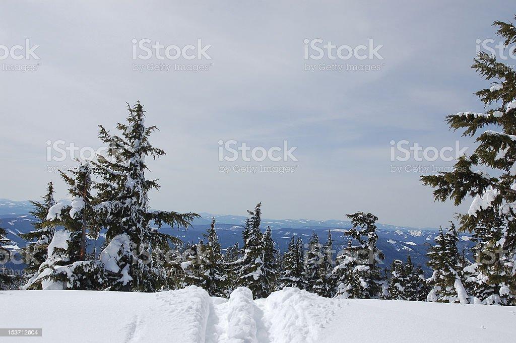Ślad nart do gdzieś zbiór zdjęć royalty-free