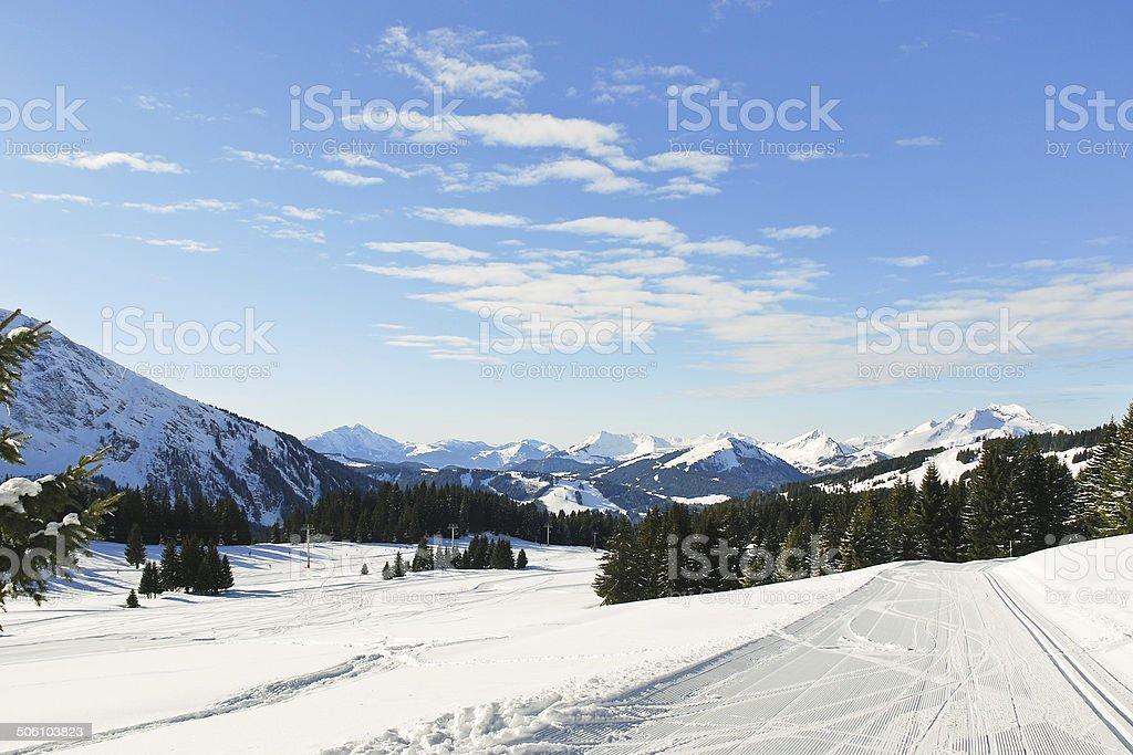 ski tracks in snow forest in Alps stock photo