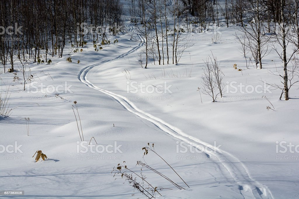 Ski traces stock photo