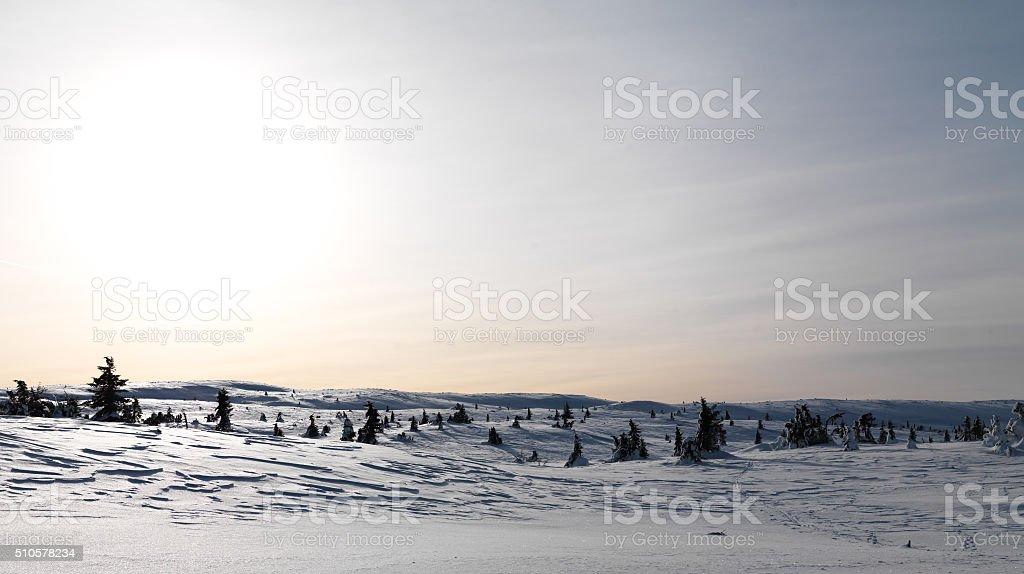 Ski Trails stock photo