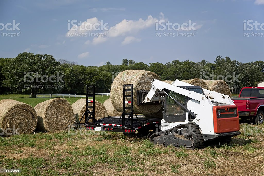 Skid Loader Loading Hay Bales on Trailer stock photo