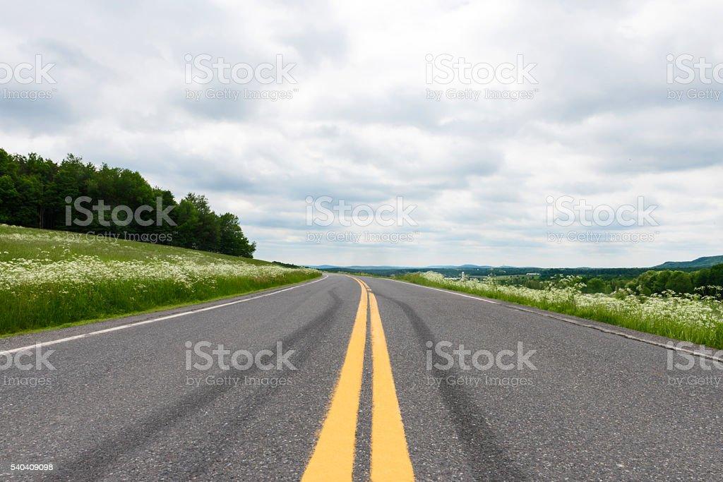 Skid Marks on Road Surface - Stock Image stock photo