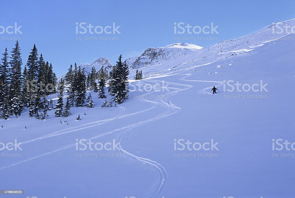 Skier carves turns on Colorado Elk Mountains royalty-free stock photo