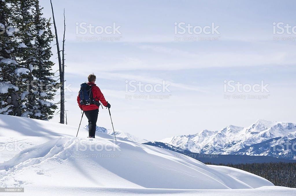 Skier Enjoying Mountain Vista stock photo