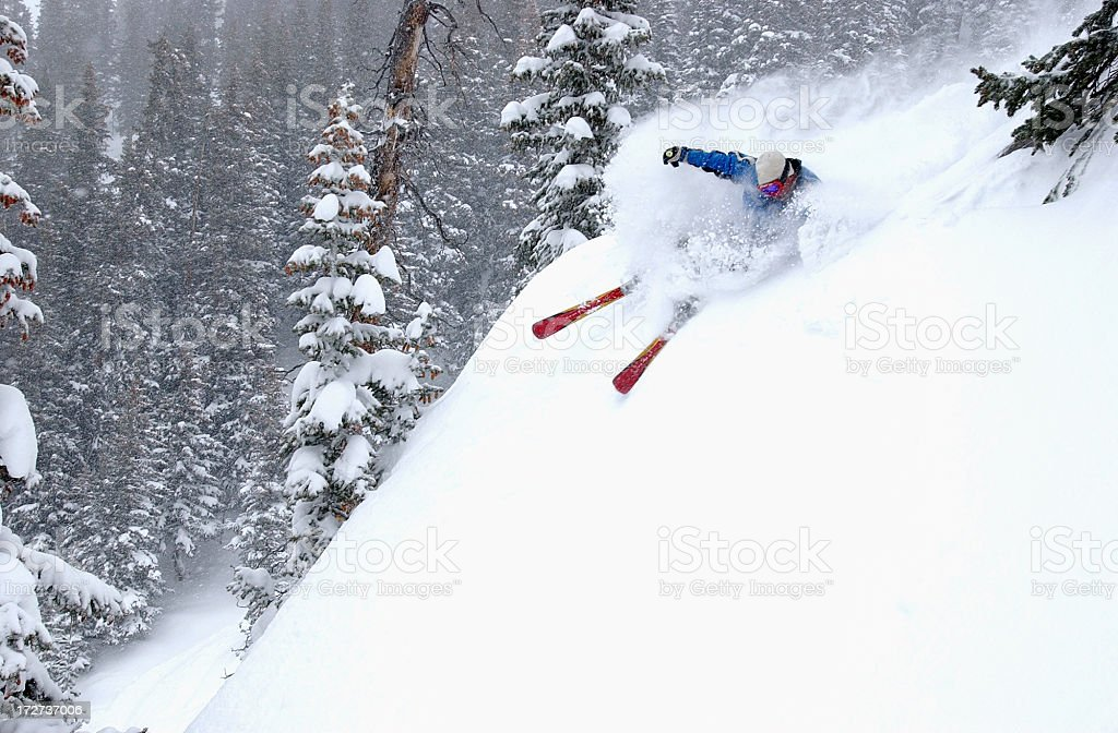 Skier in fresh powder snow royalty-free stock photo