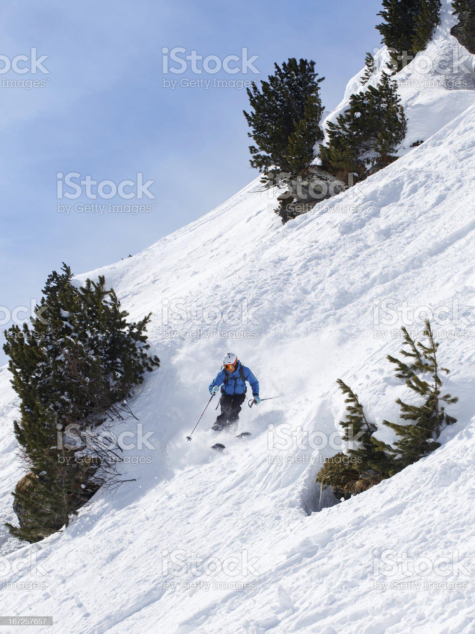 Skier making turn between trees royalty-free stock photo