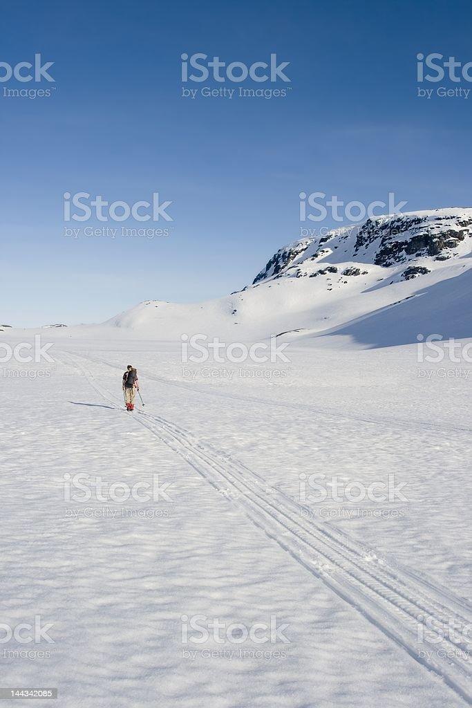 Skier on Hardangervidda stock photo