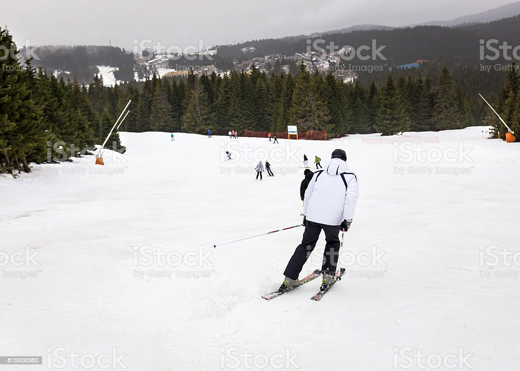 skier on ski run, skiing downhill, winter sport, Kopaonik