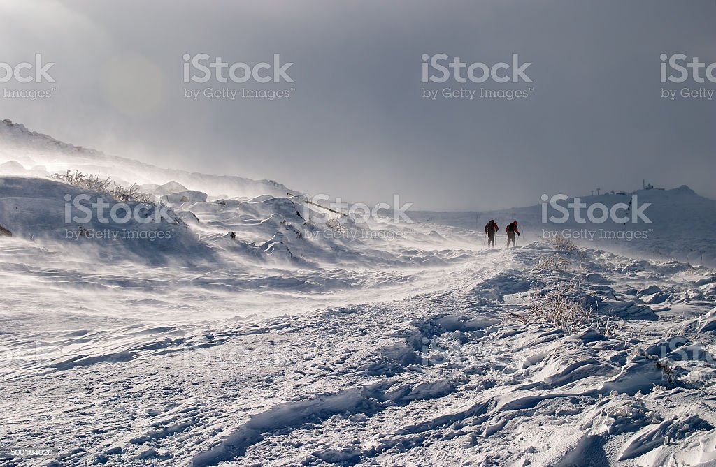 Skiers' silhouettes moving up on slope of the mountain stock photo