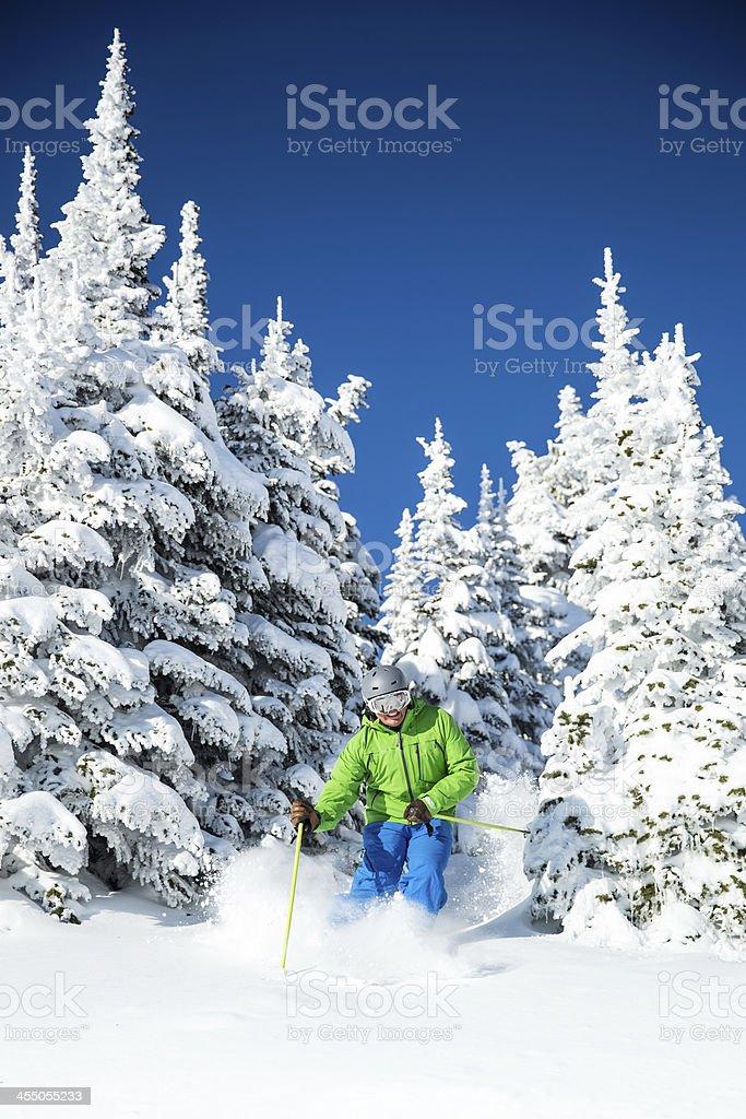 skiing blue bird sky stock photo
