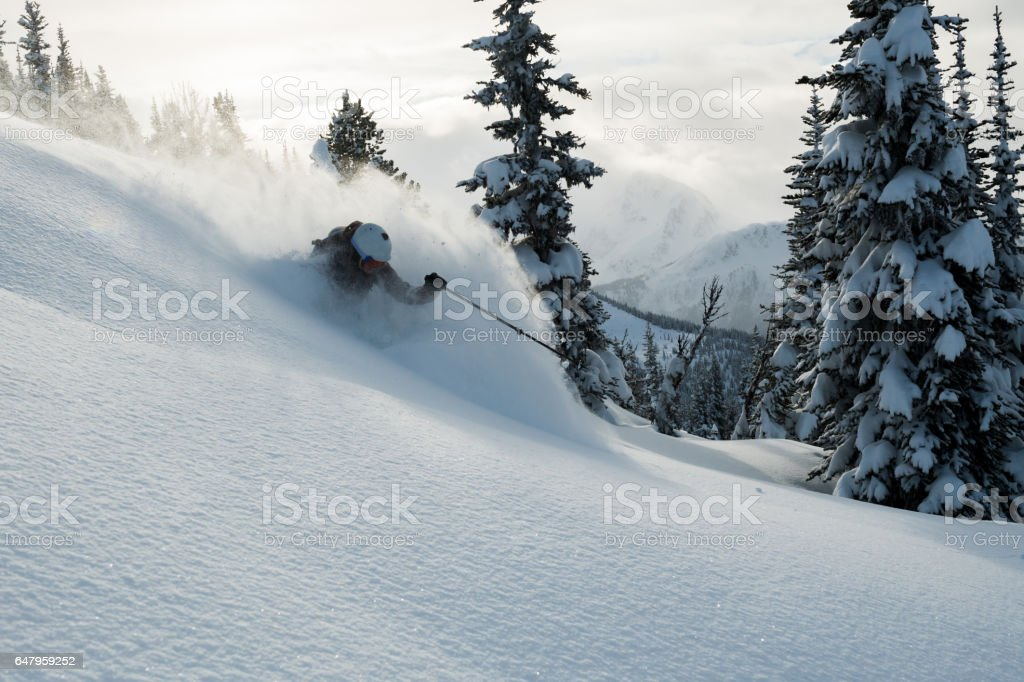 Skiing fresh powder stock photo