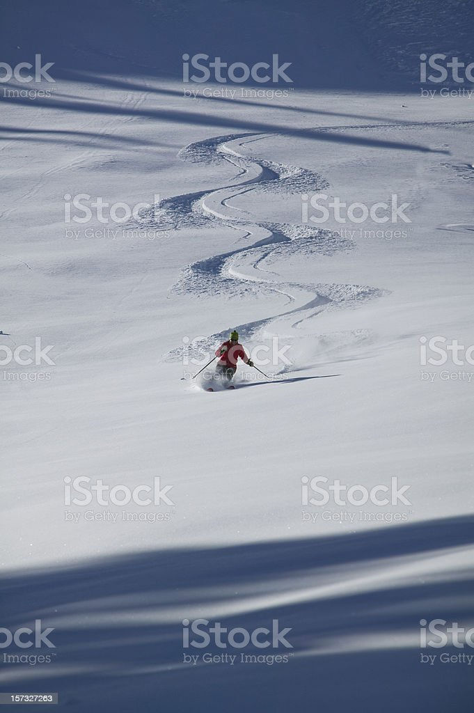 Skiing fresh untracked Powder royalty-free stock photo