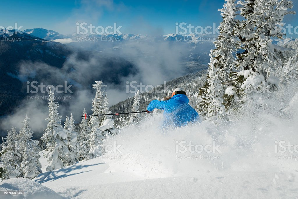 Skiing in deep powder through the trees stock photo