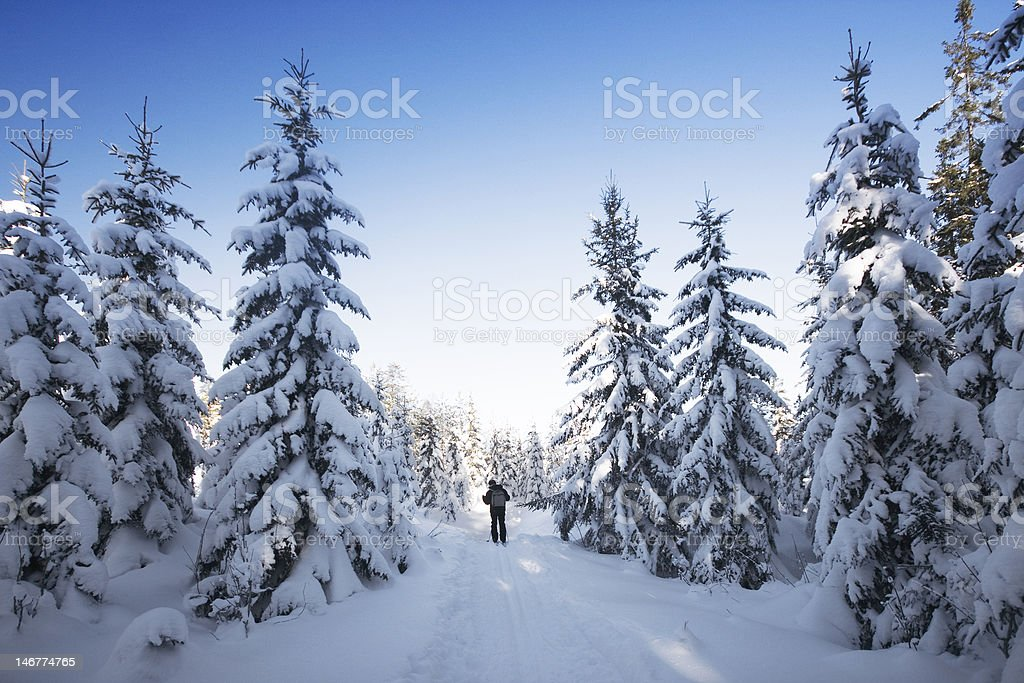 Skiing in Norway royalty-free stock photo