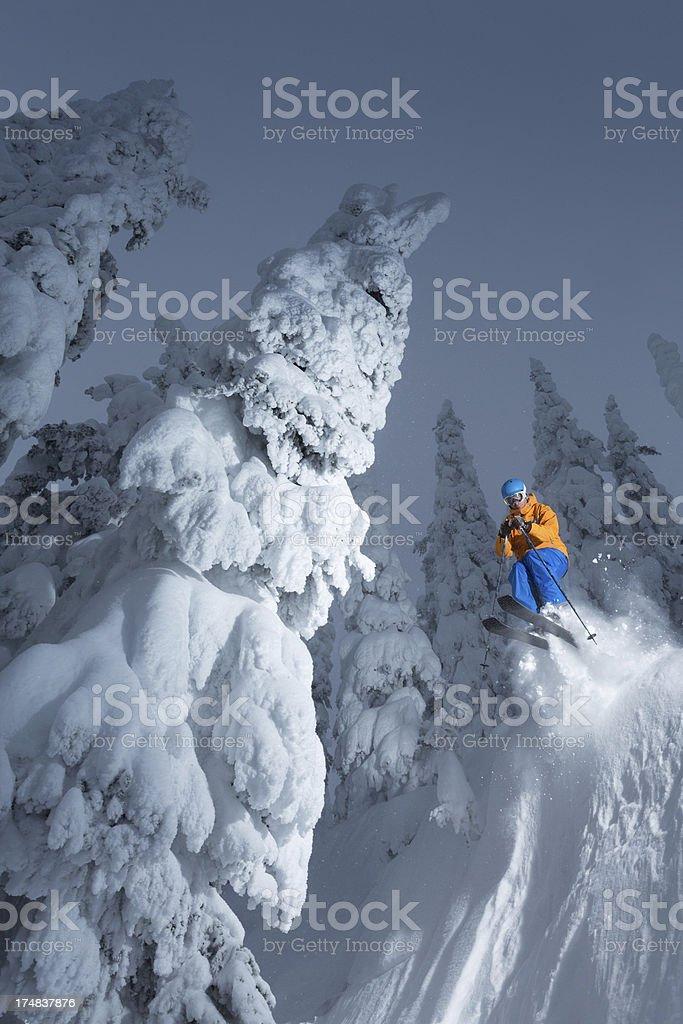 Skiing royalty-free stock photo