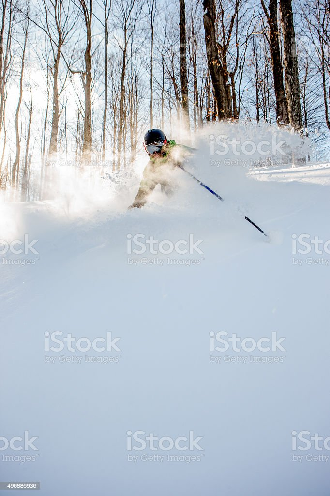 Skiing powder snow in the trees stock photo