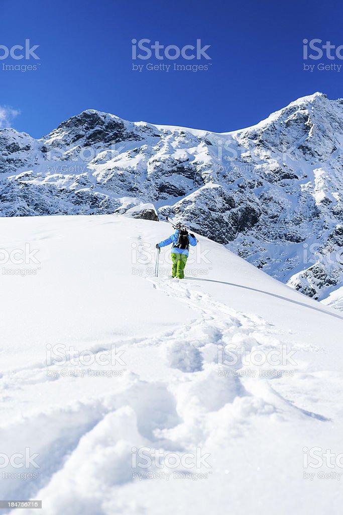 Skiing, Skier, Freeride in fresh powder snow. royalty-free stock photo