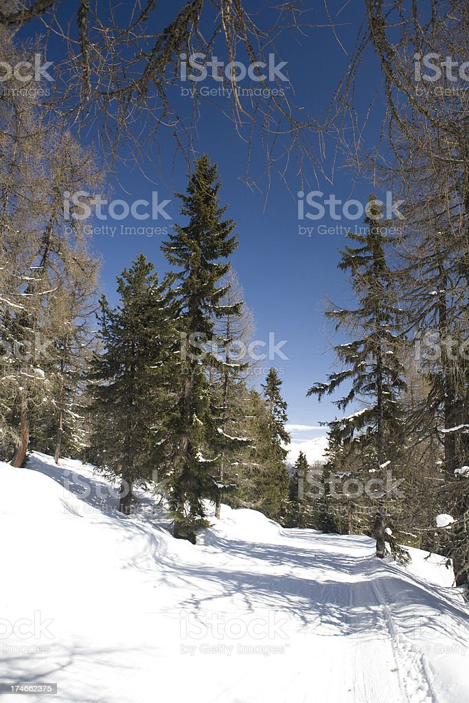 Skiing the Alps royalty-free stock photo