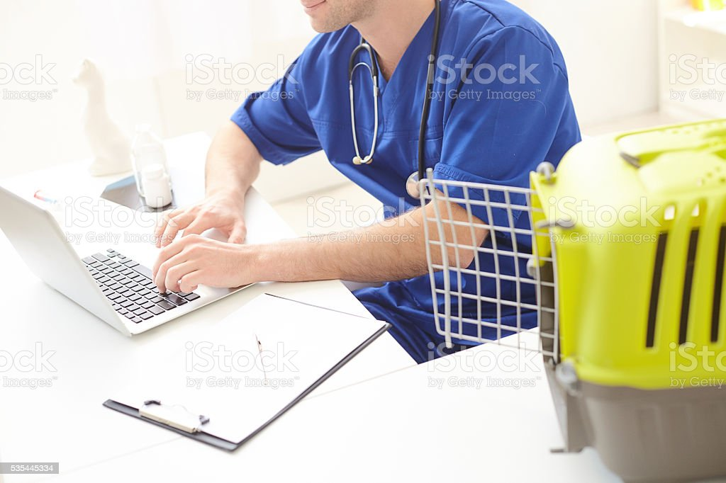 Skillful male vet is working on computer stock photo