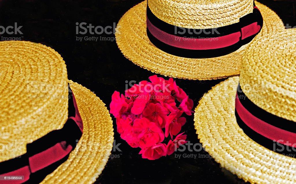 Skimmer Hats stock photo