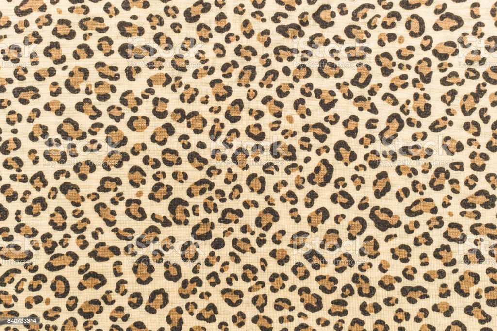 Natural cotton knitted fabric with a jaguar skin print