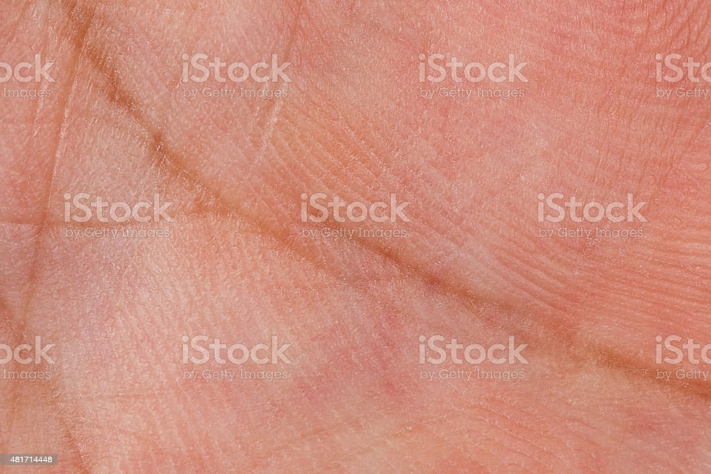 Skin texture for pattern stock photo