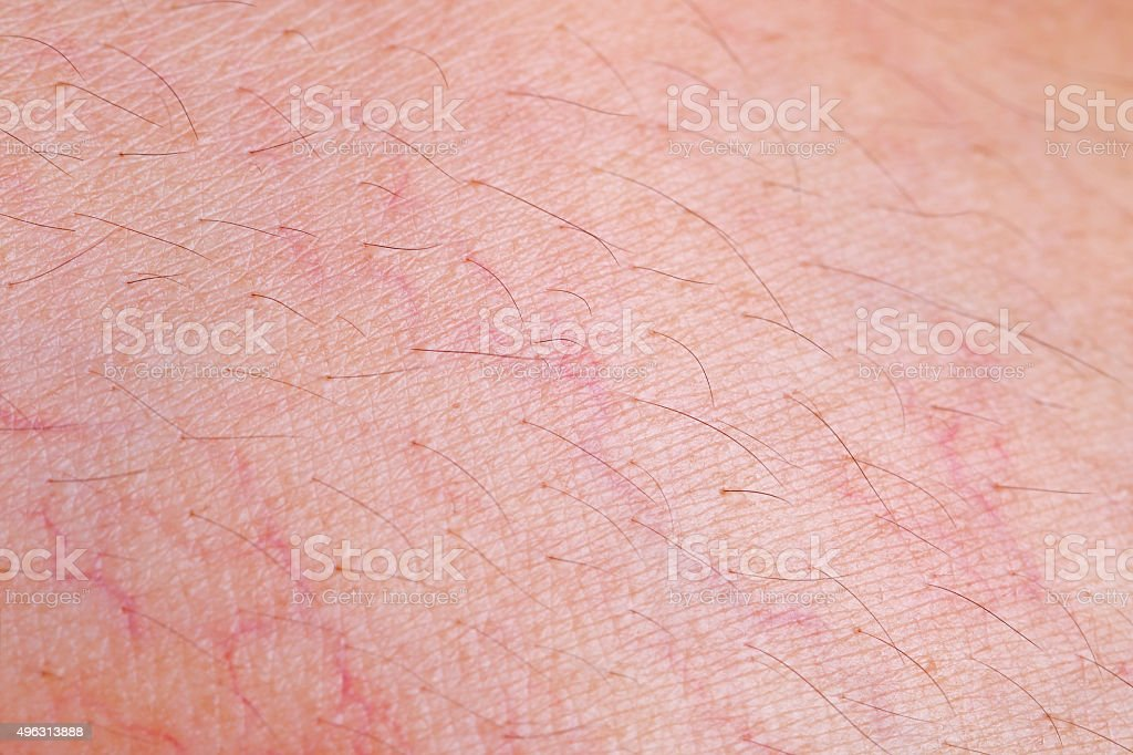 Skin texture with capillary for pattern stock photo