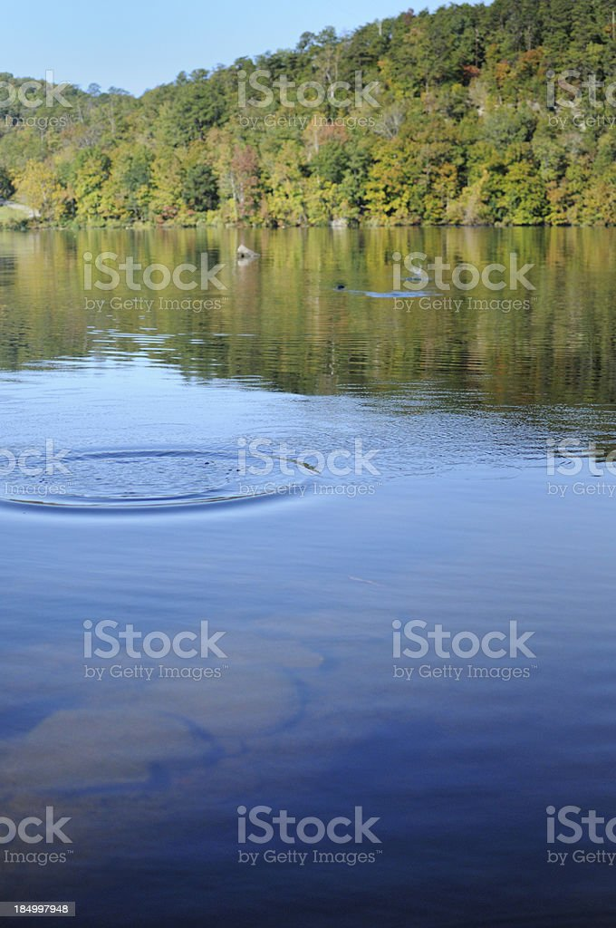 Skipping rock across river or lake stock photo