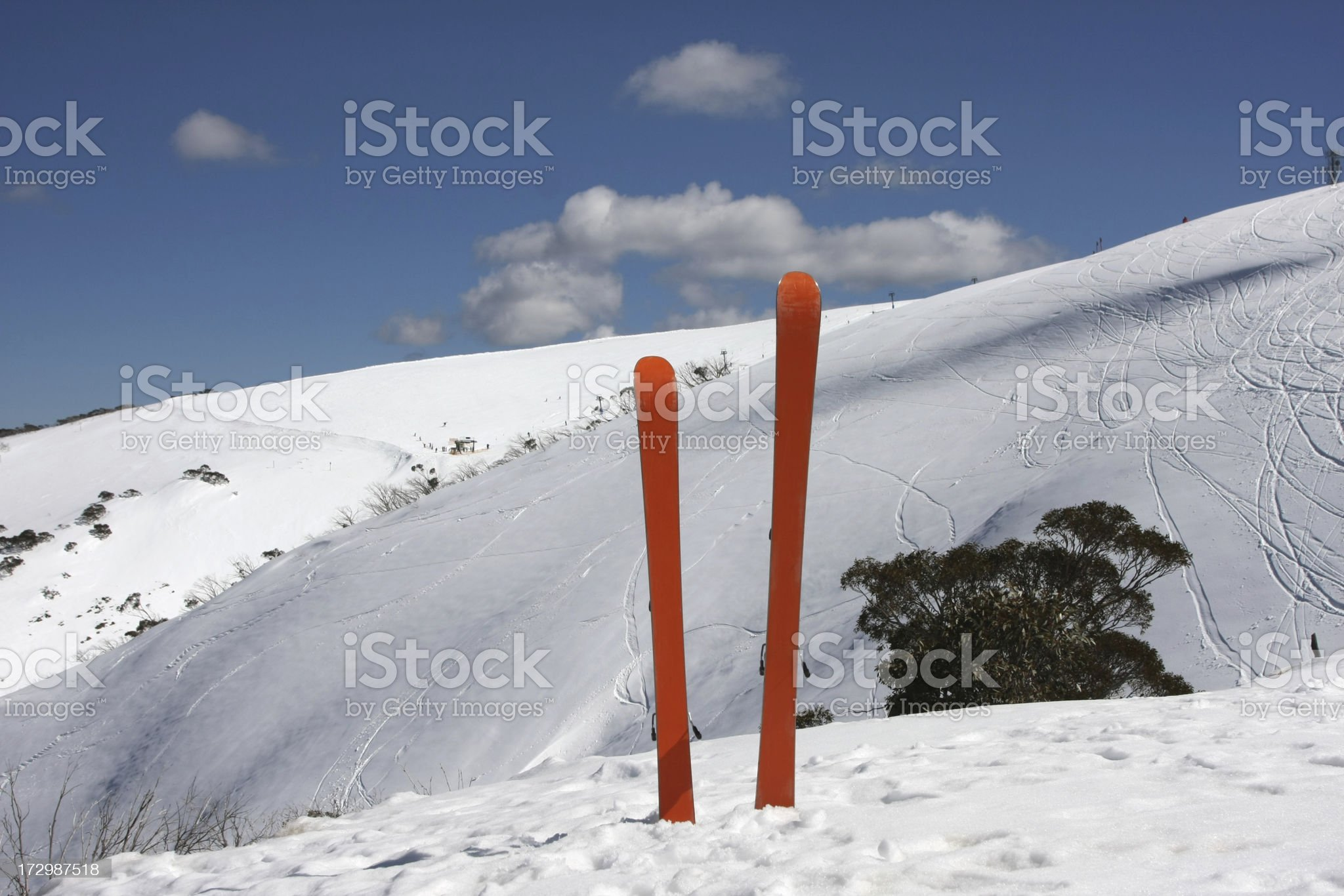 Skis in the snow royalty-free stock photo
