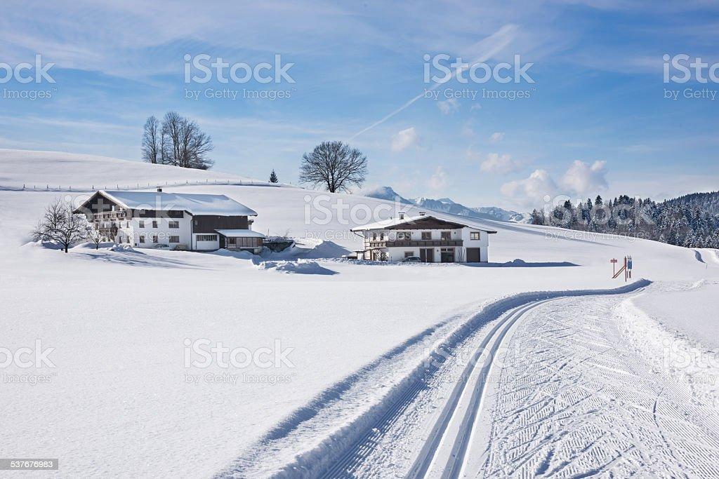 Skitrack in powder snow stock photo