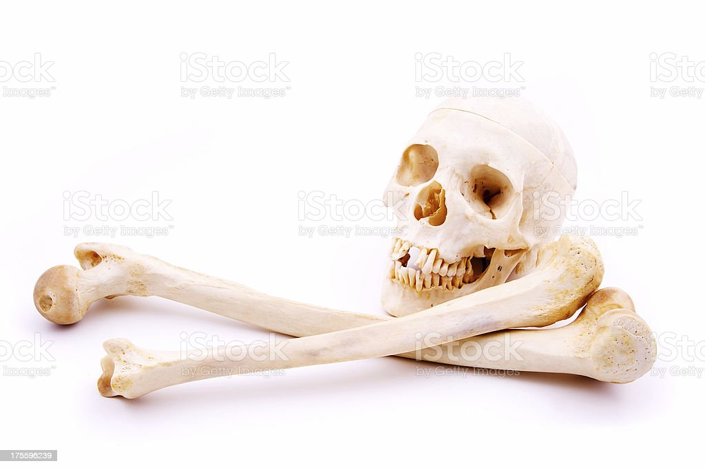 Skull and crossbones royalty-free stock photo