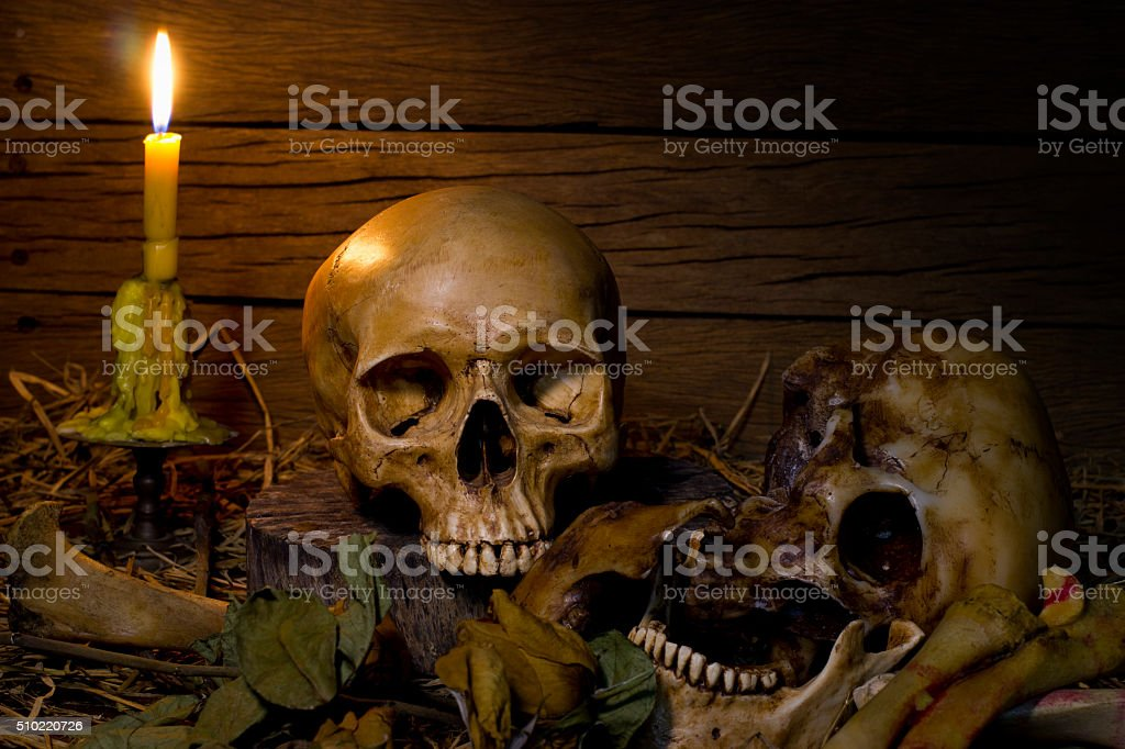 Skull and light candle- Still life style stock photo