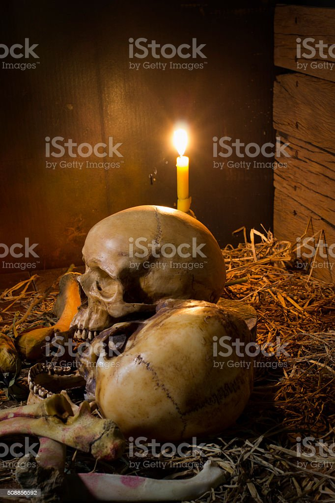 Skull and light candle with dry roses - Still life stock photo