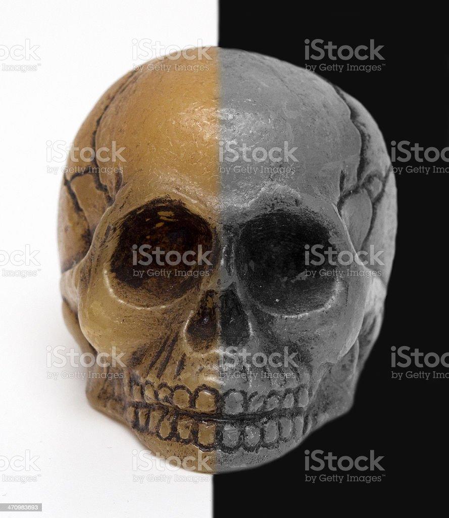 skull, black and white background stock photo