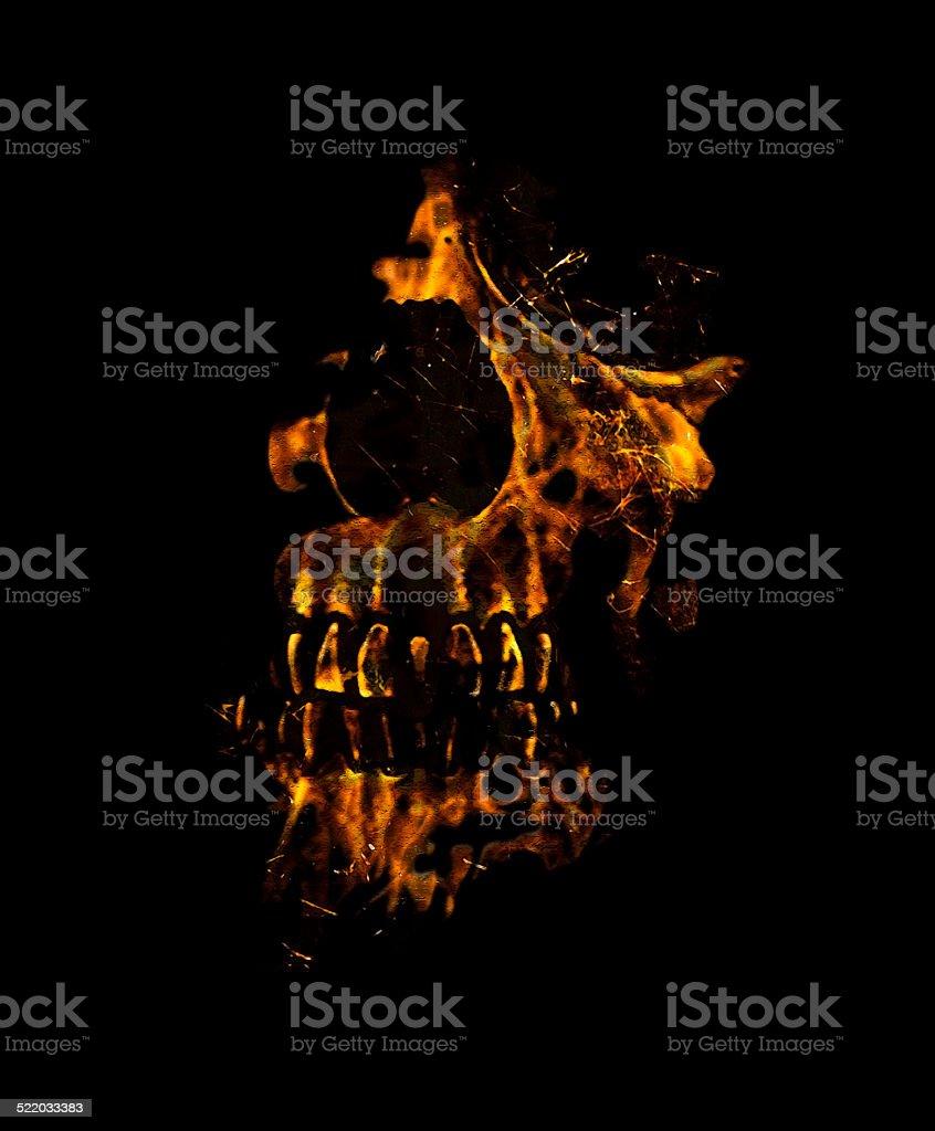 Skull Burning Digital Collage Illustration stock photo