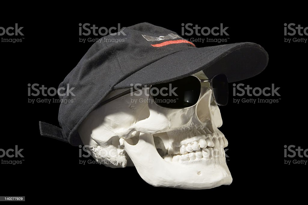 Skull in sunglasses royalty-free stock photo