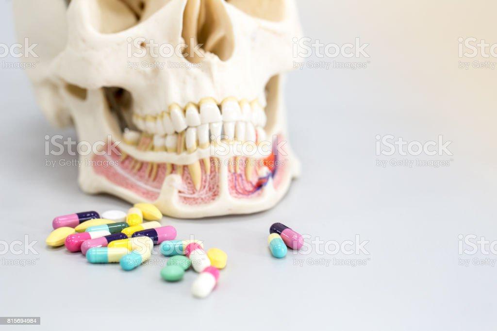 Skull model and medicine drug for education in laboratory. stock photo